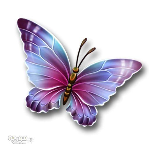 استیکرهای تلگرام پروانه ها