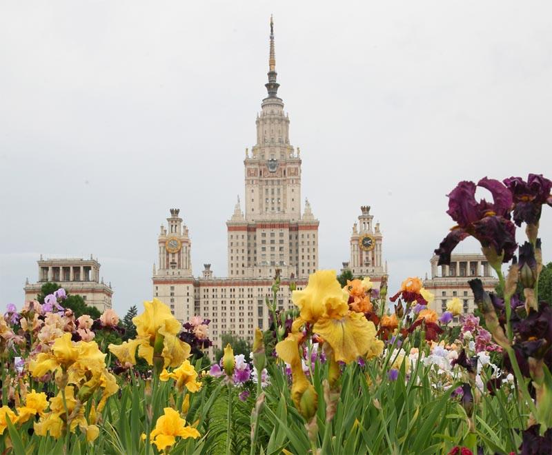 دانشگاه دولتی لومونوسوف مسکو روسیه