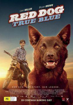 دانلود فیلم Red Dog True Blue 2016 با زیرنویس فارسی