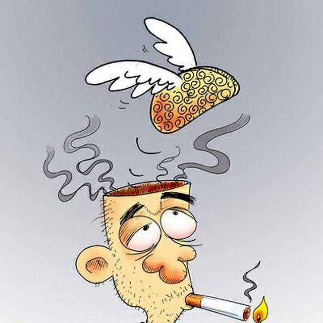 کانال تلگرام مخ تعطیل
