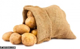 اموزش راهنمای تغذیه گیاهی در سیب زمینی