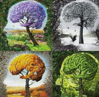 یک تصویر+چهارفصل+چهار دیدگاه