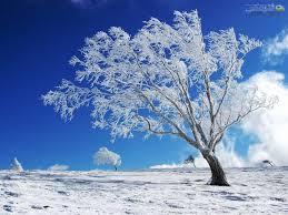 انشا درباره فصل زمستان