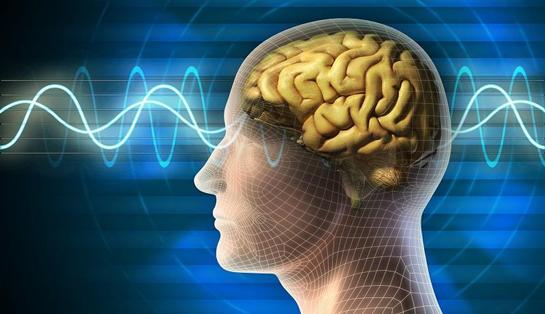 چطور حافظه خود را قوی کنیم؟؟
