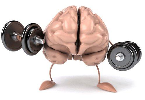 روشهایی برای تقویت حافظه بلند مدت