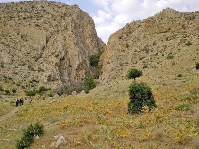 کوه بمو
