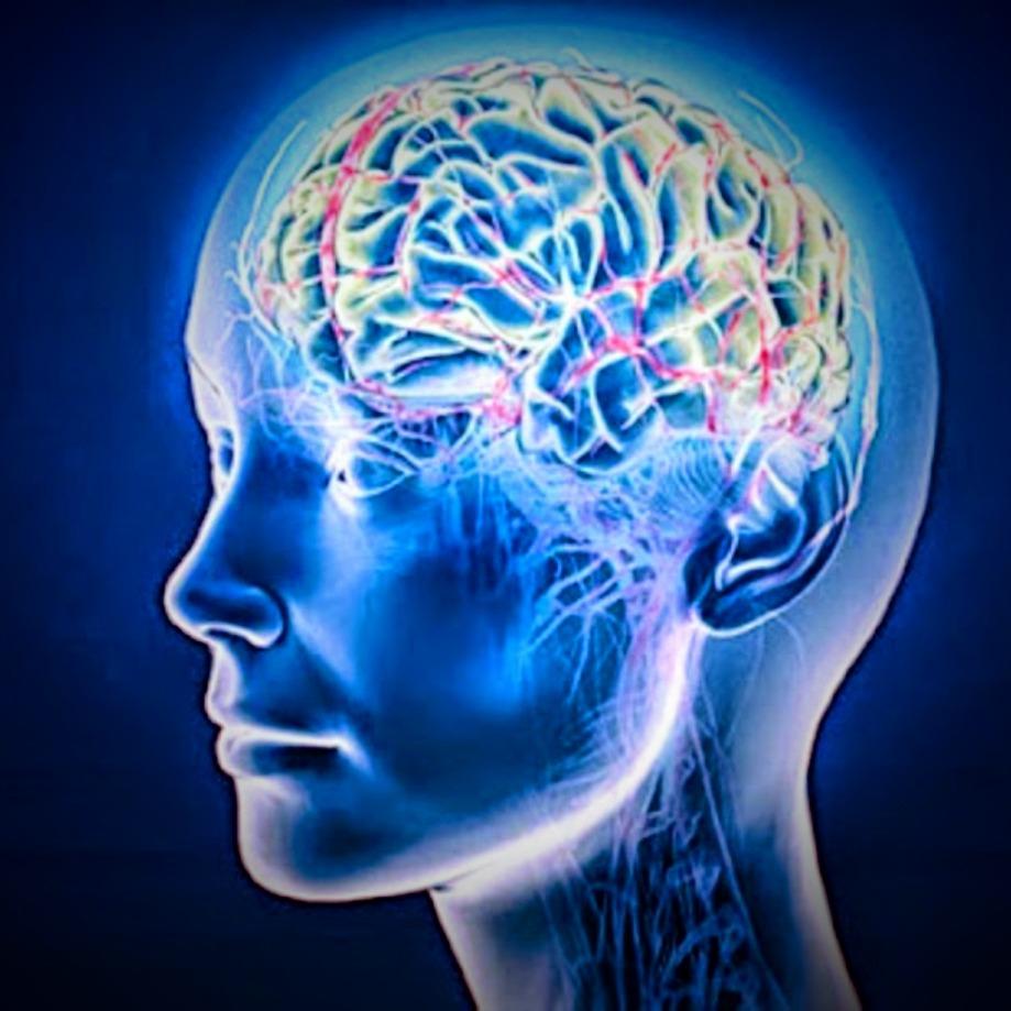راز داشتن حافظه قوی چیست؟؟