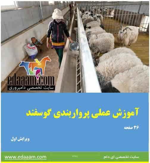 دانلود کتاب آموزش عملی پروار بندی گوسفند