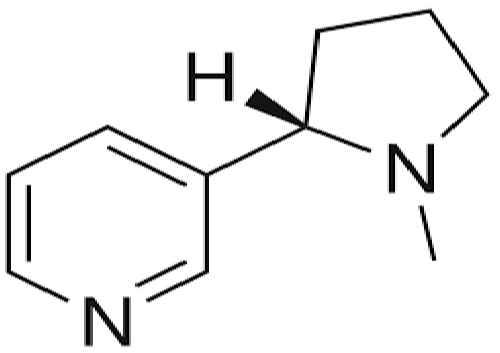 استخراج و شناسایی آلکالویید ها ی تروپان به روش شیمیایی و کروماتوگرافی