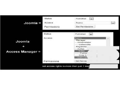 افزونه مدیریت دسترسی به سطوح متفاوت Access manager pro 2.3.1 برای جوملا3