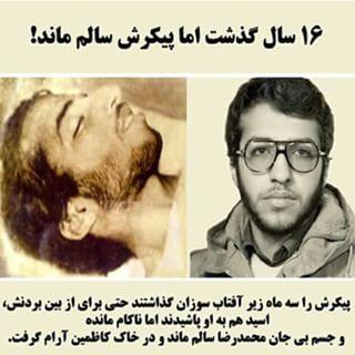 زندگی نامه شهید محمد رضا شفیعی
