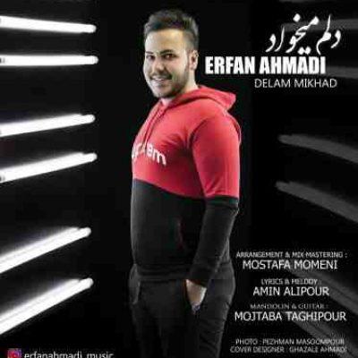 متن آهنگ دلم میخواد از عرفان احمدی