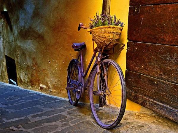دوچرخـه...