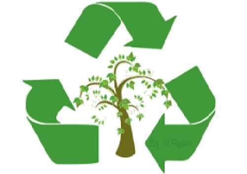 بسته بندی های پایدار و دوست دار محیط زیست