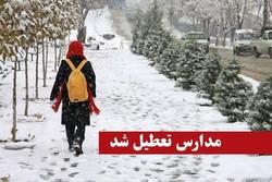 بارش برف همه را غافلگیر کرد/تعطیلی مدارس استان های مختلف کشور/بارش برف و ...