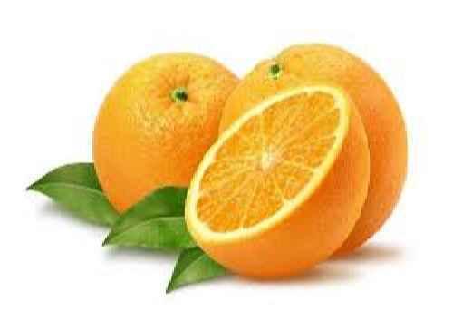 مقاله نحوه نگهداری پرتقال در سردخانه