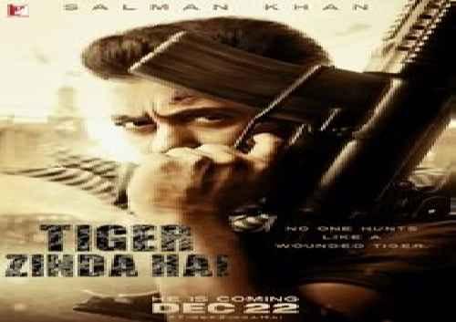 دانلود فیلم خارجی Tiger Zinda Hai 2017
