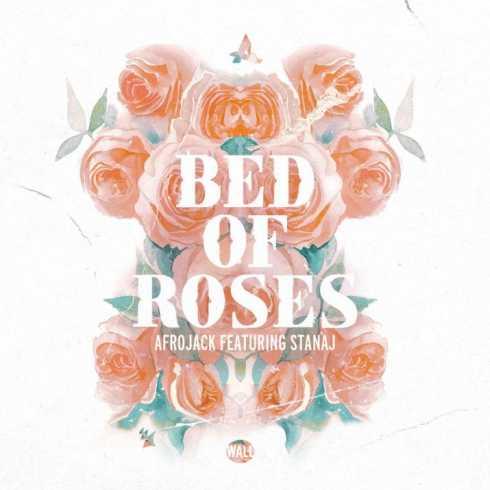 متن آهنگ Bed Of Roses از Afrojack به همراه Stanaj