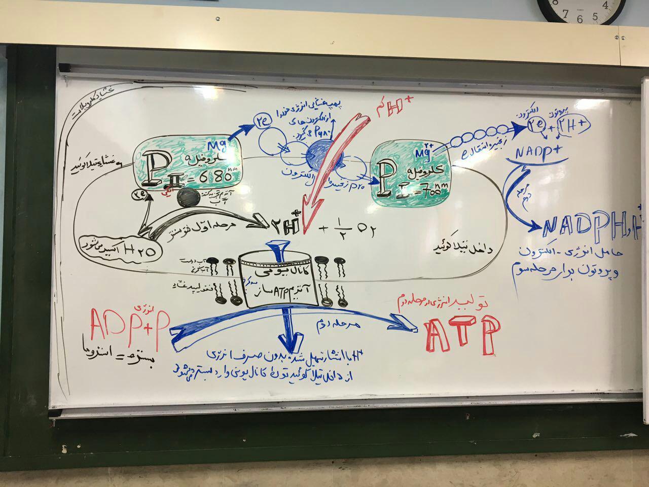 دانلود کلاس آنلاین فصل شارش انرژی دکتر عمارلو