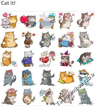 استیکر تلگرام Cat it!