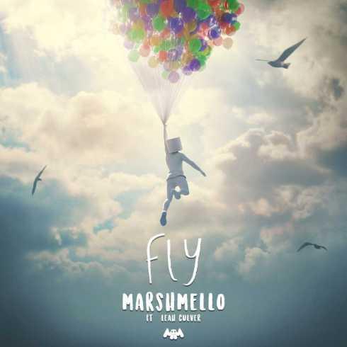 متن آهنگ Fly از Marshmello به همراه Leah Culver