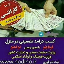 کسب درامد اینترنتی ماهی ۹میلیون با نودینو