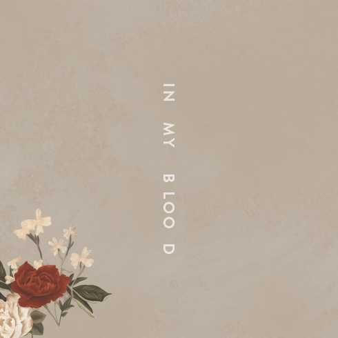متن آهنگ In My Blood از Shawn Mendes