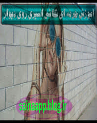 آموزش حرفه ای نقاشی اسپری روی دیوار