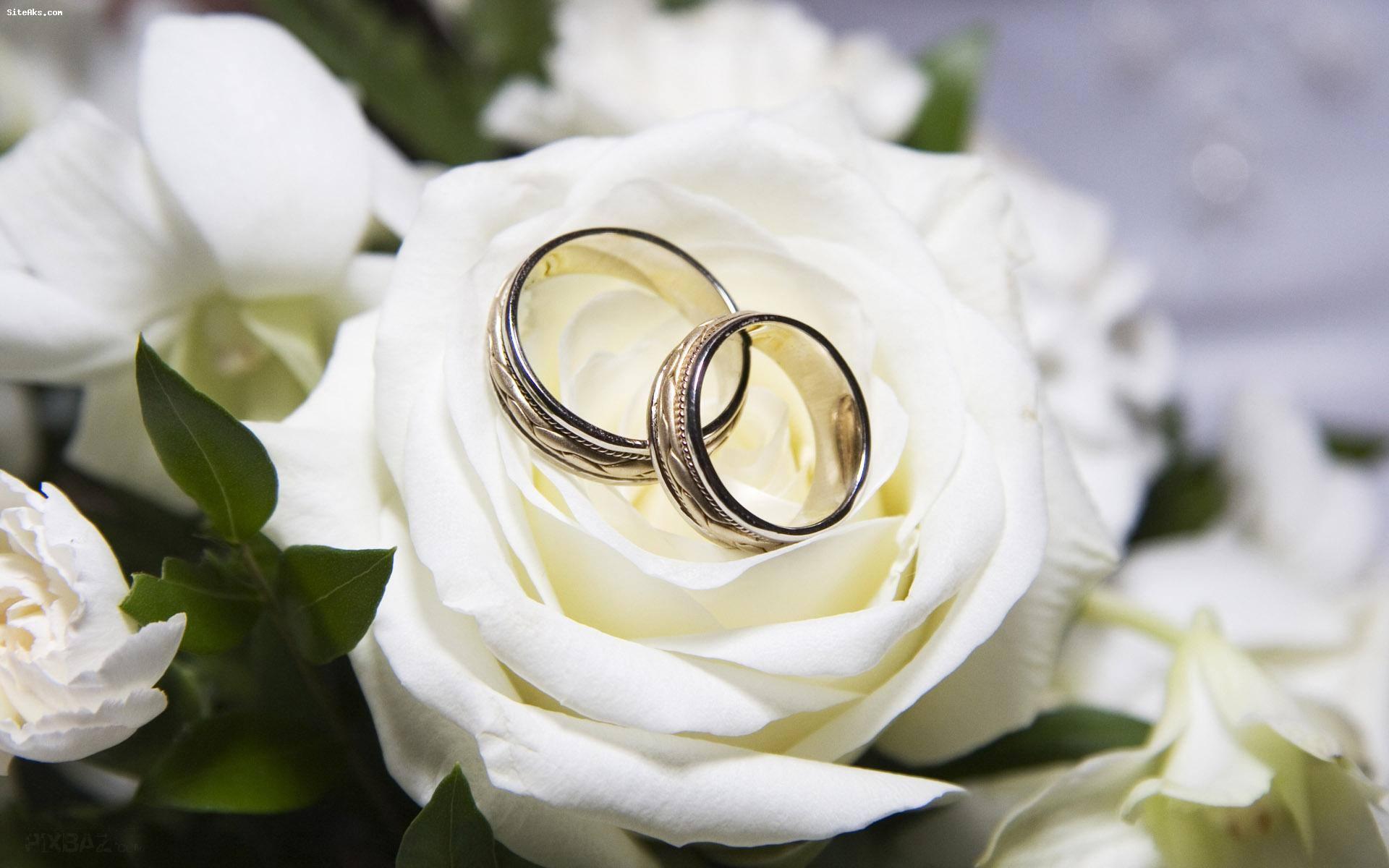 تلههایی که برای ازدواج را پهن می شود را جدی بگیریم