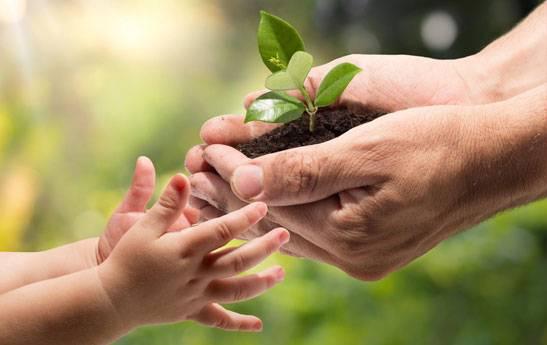15 خرداد روز جهانی محیط زیست
