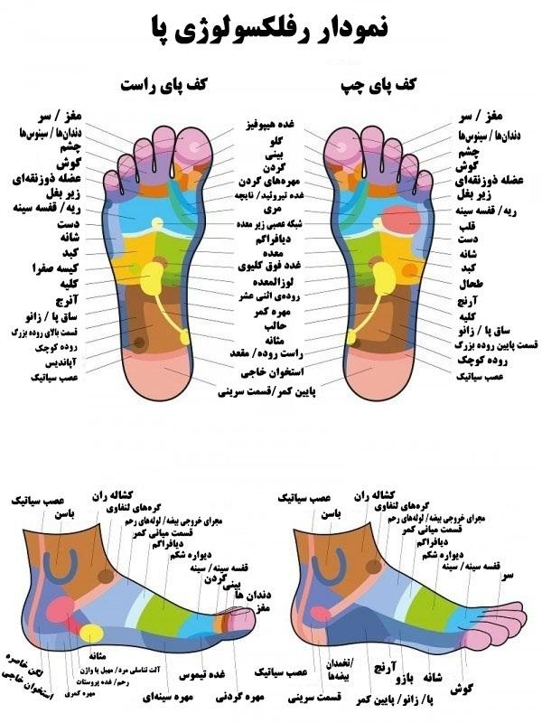 رفلکسولوژی پا و تاثیر آن در سلامت و شادابی روح و جسم