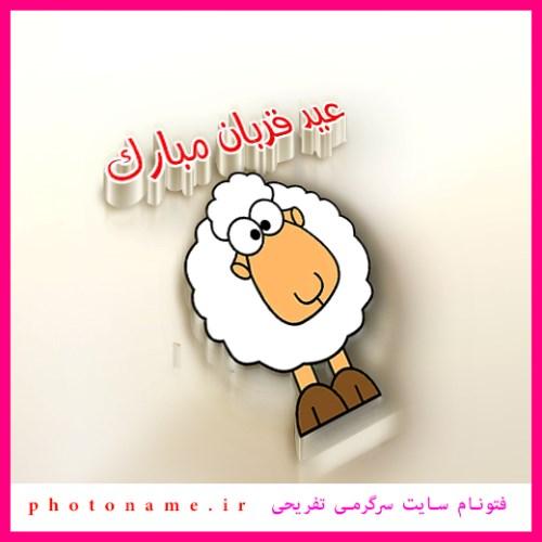 گوسفندان مصاحبه عید قربان