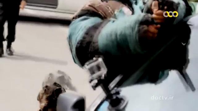 مستند سگ های پلیس مواد مخدر