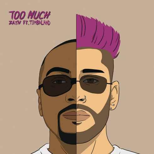 متن آهنگ Too Much از ZAYN با همراهی Timbaland