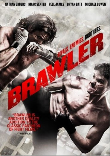 دانلود فیلم The Brawler 2017 با زیرنویس فارسی