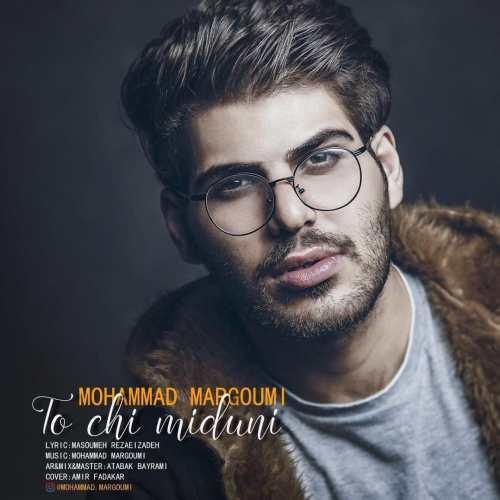 دانلود آهنگ جدید محمد مرقومی بنام تو چی میدونی