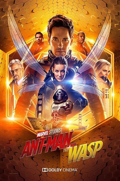 دانلود فیلم Ant-Man And The Wasp 2018 با زیرنویس فارسی