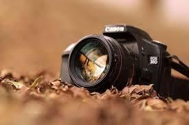 تصاویری از دوربین سبزگستران پاقلات