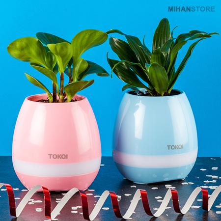 فروش اسپیکر و گلدان موزیکالی Tokqi - گلدان هوشمند چراغدار