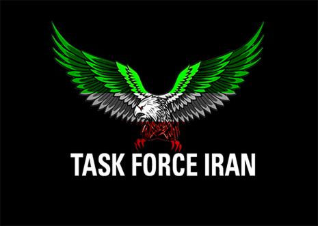 عضویت در کلن Task Force Iran