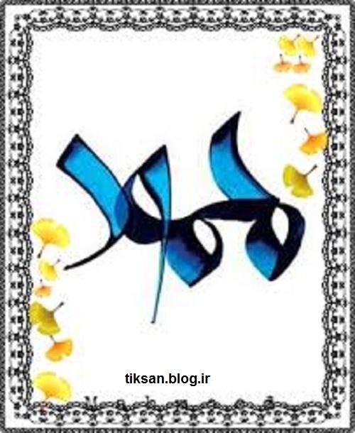 لوگو جدید اسم محمود بریا پروفایل