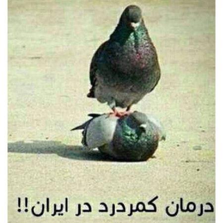 عکسی جالب از درمان کمر درد در ایران