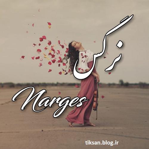 عکس نوشته دخترونه اسم نرگس