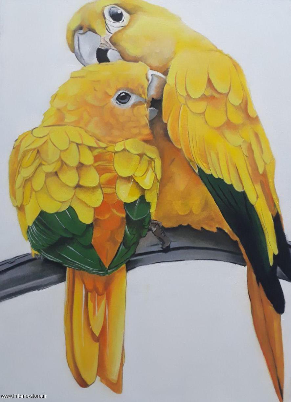 تابلو نقاشی رنگ روغن طوطی زرد