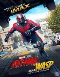 فیلم مرد مورچه ای 2 زنبورک Ant Man and the Wasp 2018