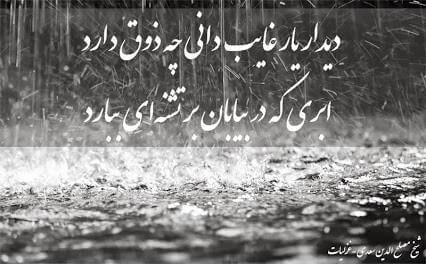 بازنویسی شعر دیدار یار غایب دانی چه ذوق دارد پایه یازدهم