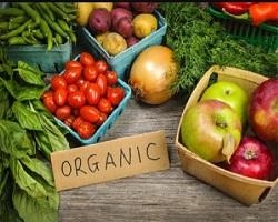 پاورپوینت معرفی محصولات ارگانیک
