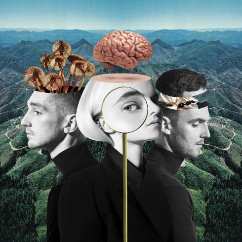 دانلود آهنگ Should've Known Better از Clean Bandit و Anne-Marie