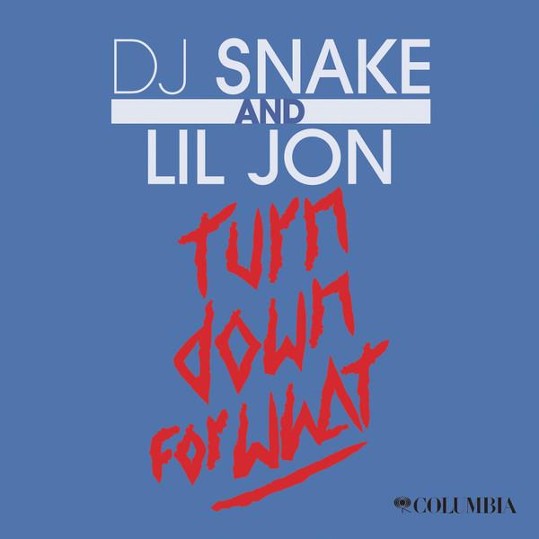 دانلود ریمیکس آهنگ Turn Down For What از Dj Snake با کیفیت 320