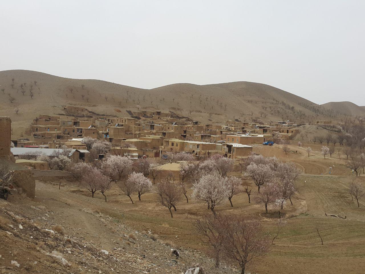نمایی از روستا